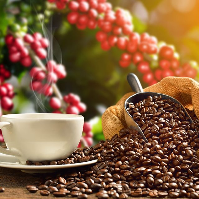 Coffee & tea industry label printers from Afinia Label